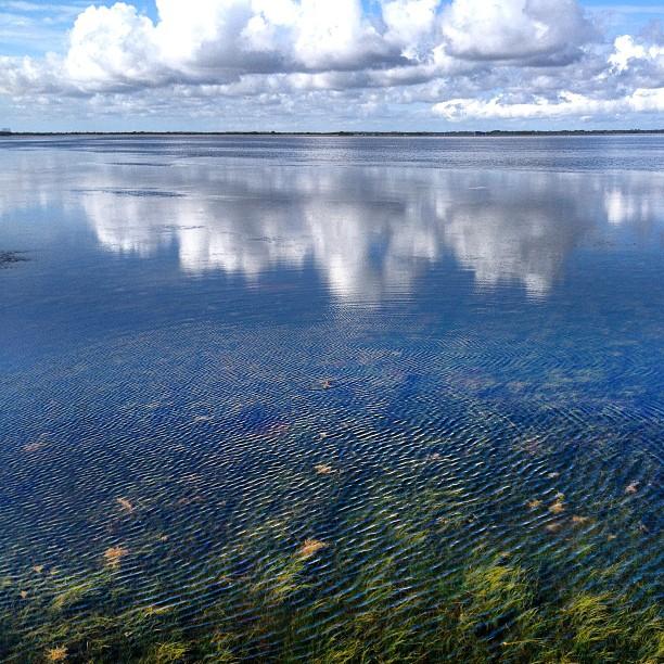 Mosquito Lagoon July 2013 SkinnySkiffCom 1
